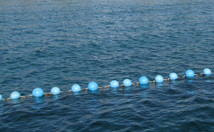 Blue buoys 2: A line of buoys in the red sea.