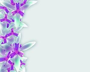 Orchid Border: A side border or frame of orchids. You may prefer:  http://www.rgbstock.com/photo/o3BdbJi/Fairy+Iris+Border+11  or:  http://www.rgbstock.com/photo/2dyVKxM/Floral+Border+30