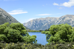 New Zealand nature: Beautiful nature scenes in New Zealand