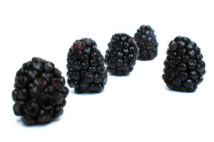 Blackberries.: A few blackberries.