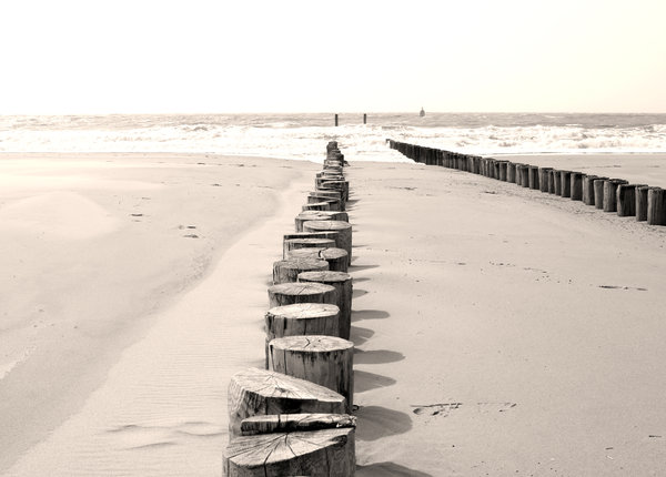 lines: the groynes of Walcheren in the Netherlands are so typically Dutch. These poles are usually about 1 meter or higher, but the beaches were recently covered with fresh sand. Tip of the iceberg so to speak.