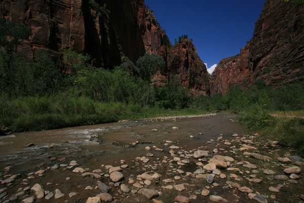 Virgin river (Zion N. Park) 2: The Virgin River in Zion National Park (UTAH)