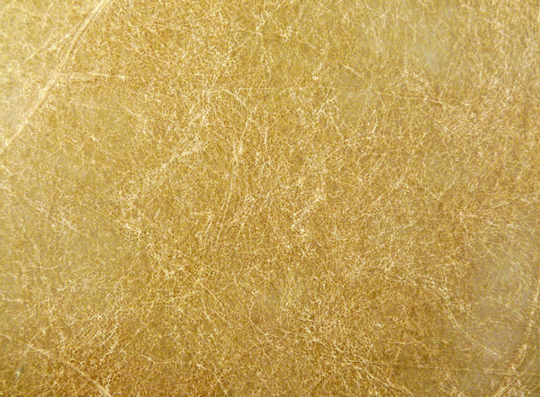 Parchment: The texture of the surface of a thin skin sheet. Improved version of image mfPoqYO