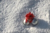 Christmas baubles in the snow: Christmas baubles in the snow with a red ribbon