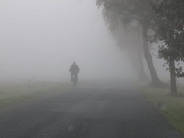 misty weather: ...