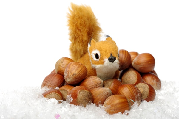 Squirrel, hazelnuts and snow: Small decorations squirrel with hazelnuts ind the snow