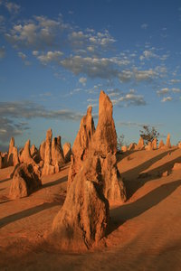 Pinnacles: Pinnacles Dessert, W. Australia