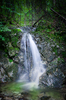 Secret Waterfall: Small Waterfall hidden in deep Forest