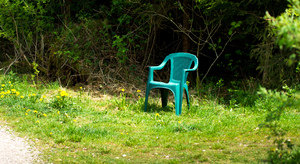 Plastic Chair in Forest: Green Plastic Chair left alone in the Forest