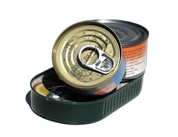 canned food: none