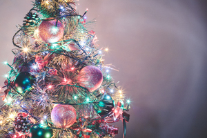 Christmas Tree 13: Photo of christmas tree
