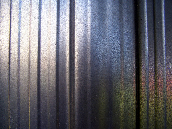 Wall reflections: Garden shed wall of aluminium reflects late afternoon light and the garden.