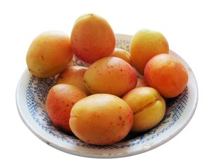 bowl of apricots: bowl of mellow apricots in a rustic bowl, isolated - clipping path included