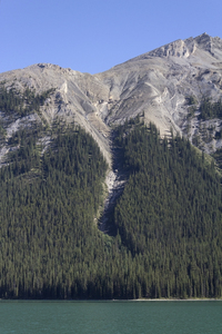Landslide: A landslide/avalanche area on a mountainside in the Rocky Mountains, Canada.
