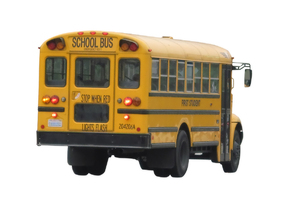School bus: A yellow bus.