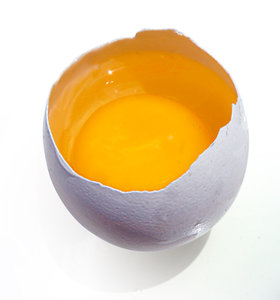 cracked egg: No description
