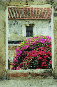 Time open windows: This is how life looks like through some of the eldest windows at La Antigua, Guatemala.