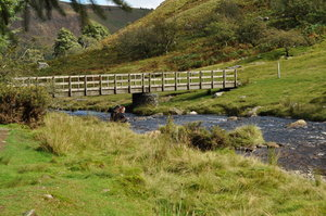 Wooden bridge: Wooden bridge over river downstream from waterfall in Wales