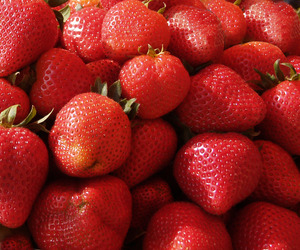 Stawberries: Lots of strawberries, ideal for backgrounds