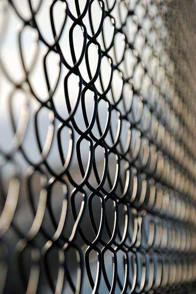 Security fence 3: Fence