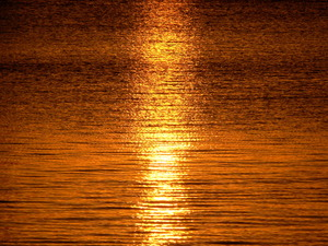 Sunset reflection: Sunset reflction in the Bay