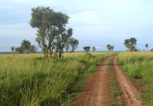 red road: photo taken in Uganda