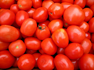 Roma tomatoes: a large quantity of ripeRoma tomatoes