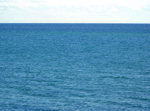 ocean horizon1: vast expanse of the Indian Ocean