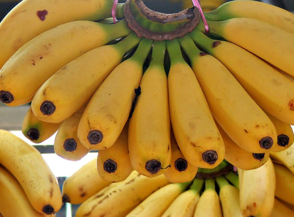 banana colours: bunches of bananas for sale