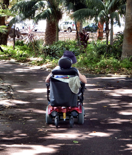 shadowland wheelchair mobility: wheelchair mobility along tree lined shady park path