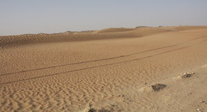 Tire Tracks through the Desert: Tire Tracks through the Arabian Desert