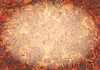 Oval Grunge Background: A grungy background in rust or autumn colours with an oval highlight. Makes a great desktop, texture, banner, etc.