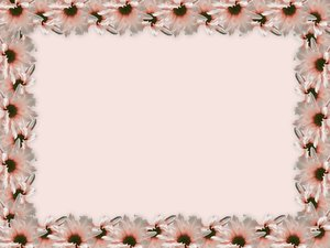 Floral Border 22: Floral border on blank page. Lots of copyspace.