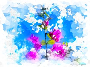 Springtime - Watercolour: A watercolour effect on a photo I took of a bouganvillea. Use within image licence or contact me. You may prefer:  http://www.rgbstock.com/photo/mlwZcOw/Grunge+Rose  or:  http://www.rgbstock.com/photo/n1EZbi8/Springtime+-+Watercolour+2