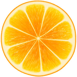 Orange Slice: A round slice of orange against a white background. Delicious!