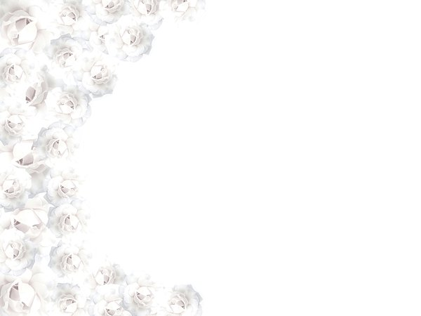 White Rose Border 1: Border made with white roses. Please use these images only within RGBs image licence. There are restrictions on use of all images on this site.