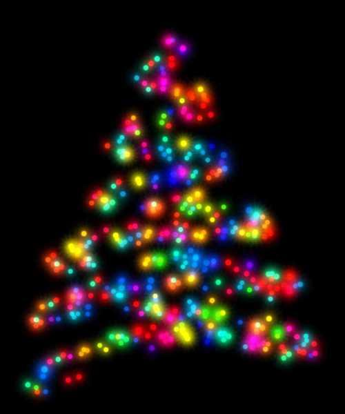 Gratis Stock Foto S Rgbstock Gratis Afbeeldingen Kerstboom
