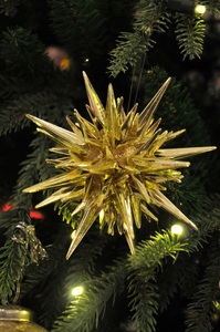 Christmas golden star