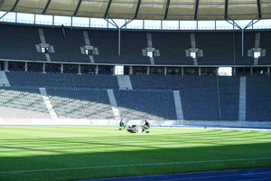 olympic stadium 6: the olympic stadium in berlin