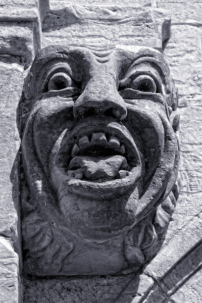 Surprised gargoyle