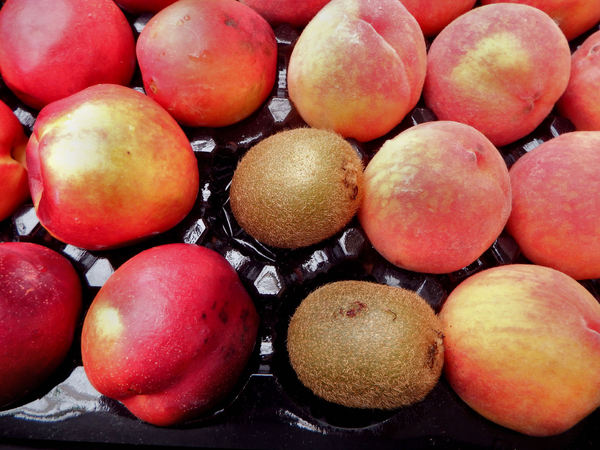 stone fruit tray2