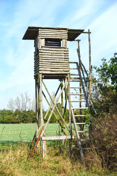 raised hunting blind