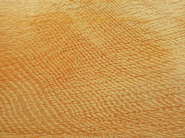 woodgrain panelling2: panelled woodgrain surface textures