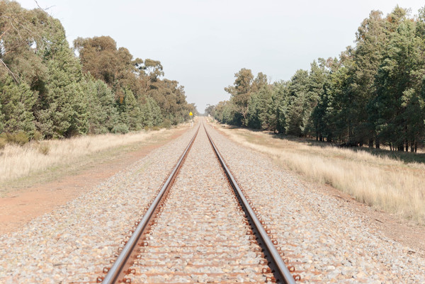 transport: a straight stretch of railway track with trees either side