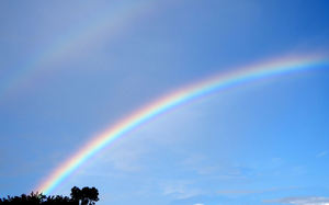 rainbow in the morning1
