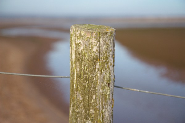 Fence post: Fence post on a beach, blurred background