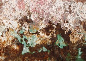 Agricultural Grunge.: You can find interesting grungy textures in a farmyard.