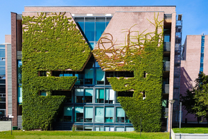 business house facade greening