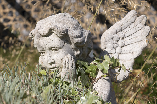 Wistful statue: An old statue of a wistful cherub in an overgrown garden in England.