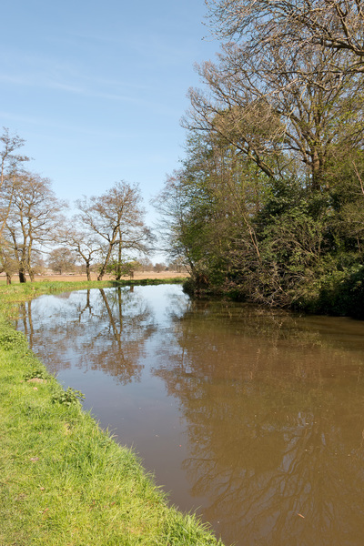 River in spring: The River Wey in Surrey, England, in spring.